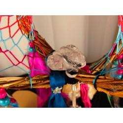 """Attrape rêves artisanal 3D totem tortue et abalone """"L'île aux tortues"""""""