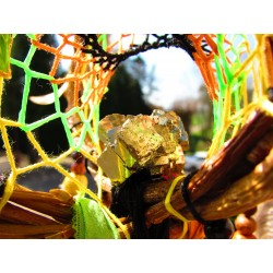 "Attrape rêves artisanal 3D citrine et pyrite ""La jungle d'or"""